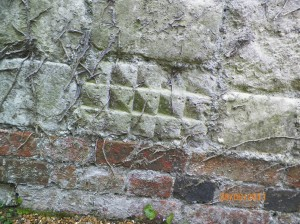 South wall N face R car park Stone 3