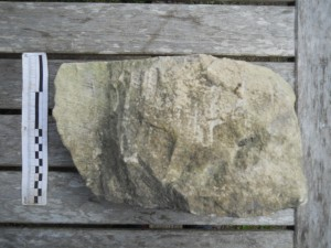 Ashlar from Hyde Abbey wall  foundations H900-49-1